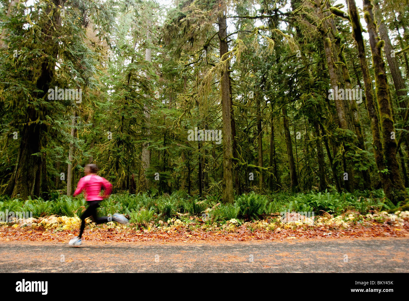 A female jogging down a road next to tall trees covered in moss. - Stock Image