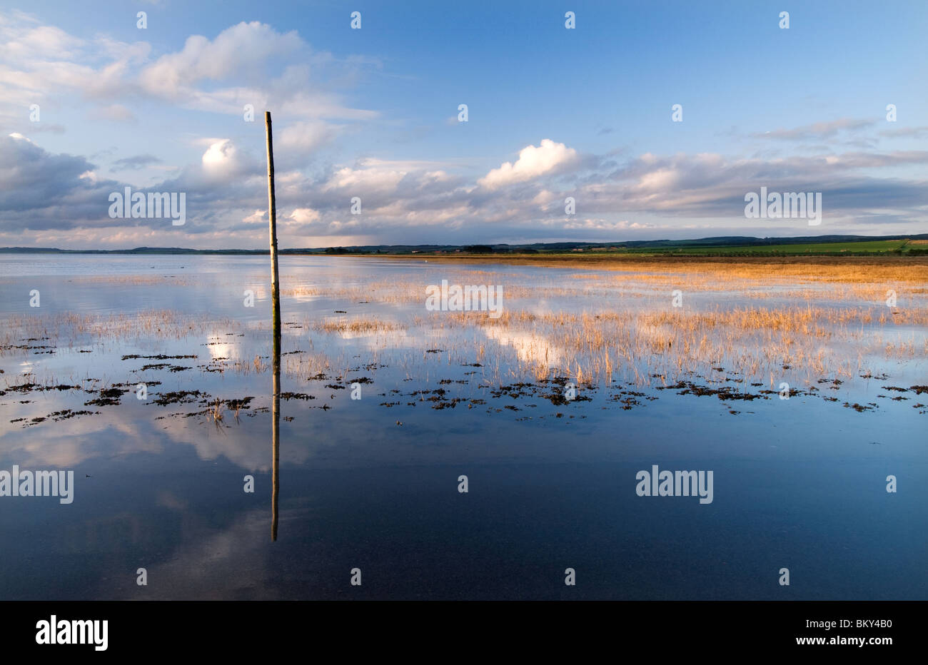 One of the Pilgrims Way Marker Posts on Lindisfarne Causeway - Stock Image
