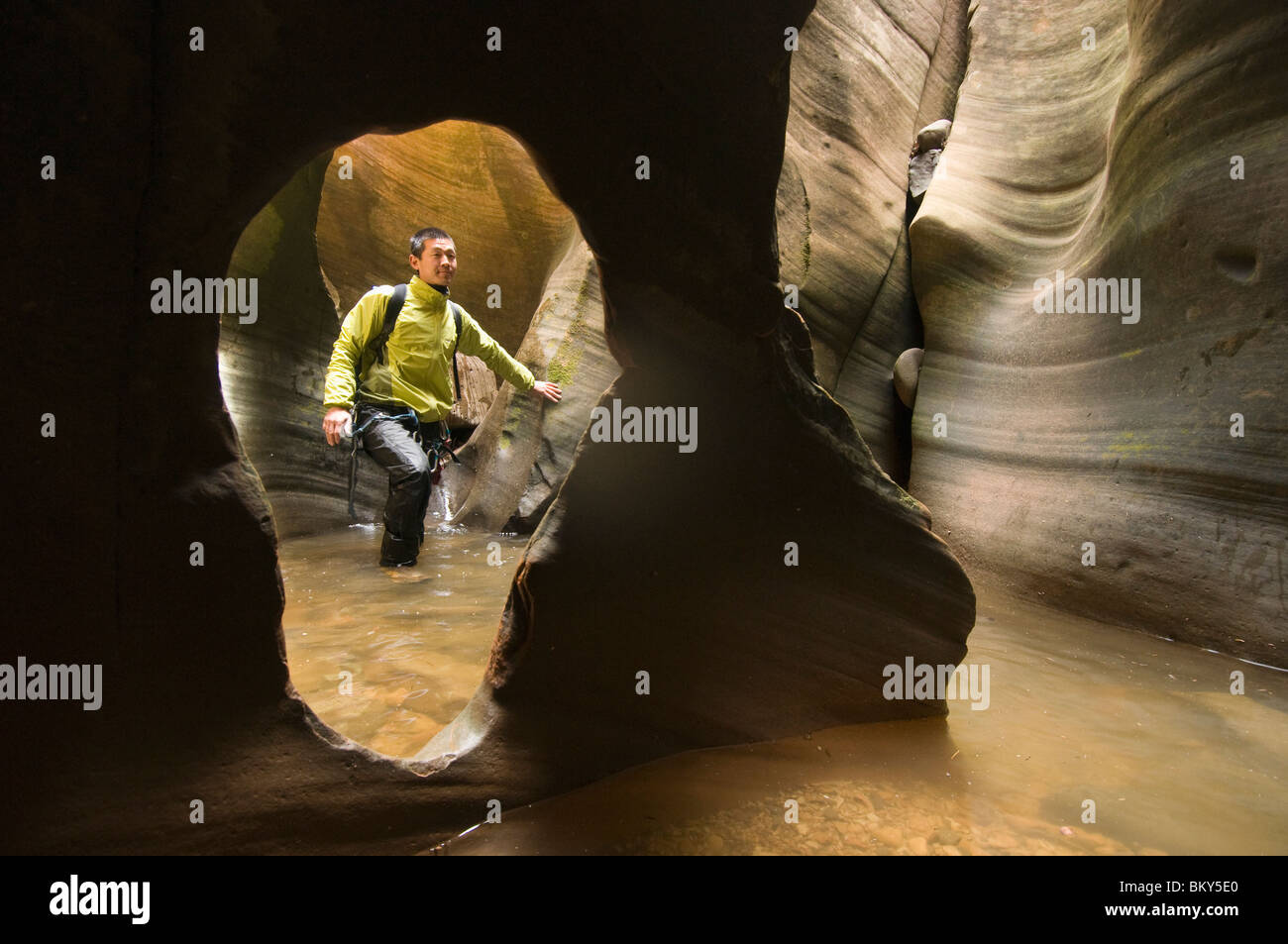 An Asian man canyoneering through a watery canyon in Zion National Park, Springdale, Utah. - Stock Image