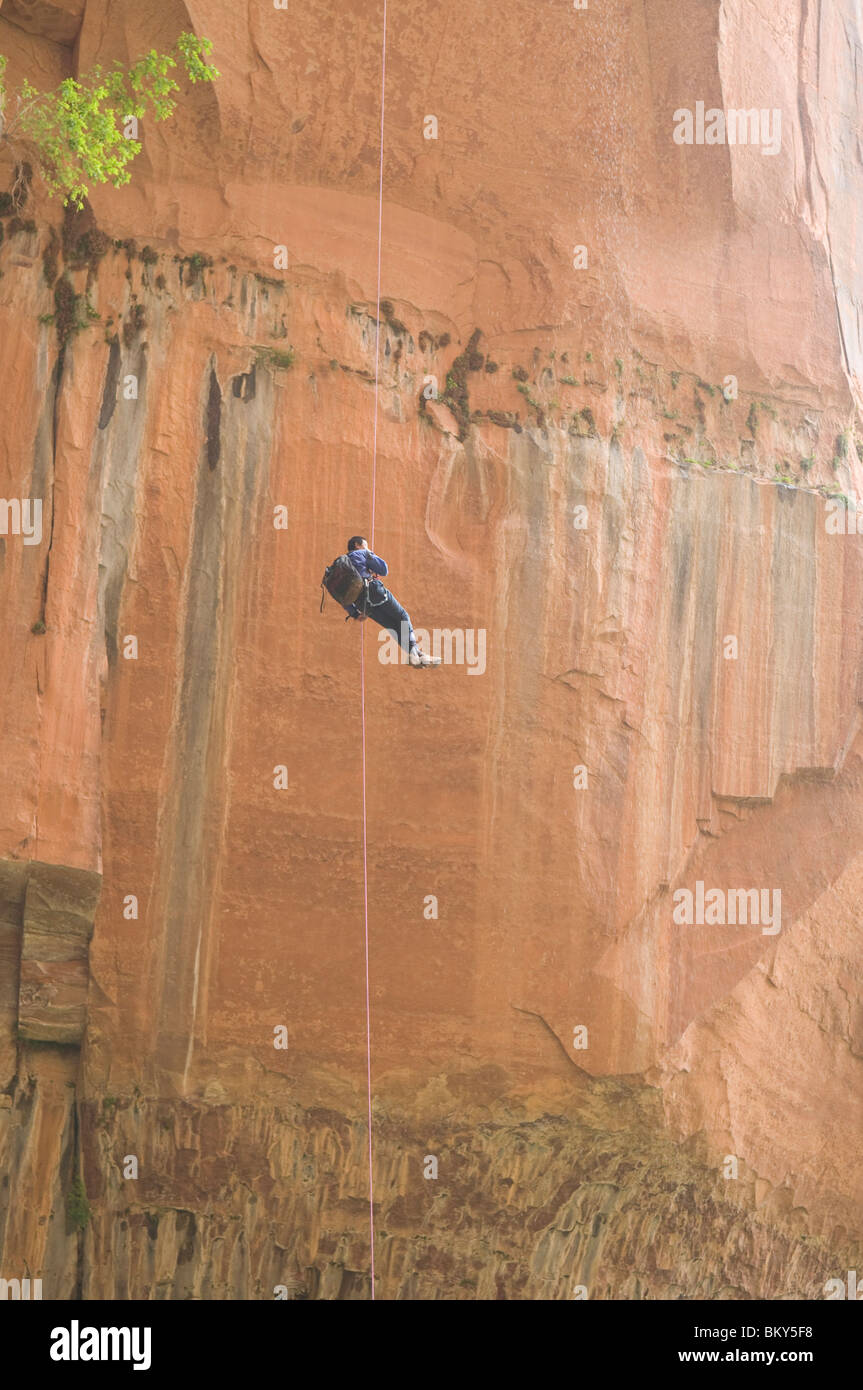 A canyoneering man completing a free rappel at the end of Heaps Canyon, Zion National Park, Springdale, Utah. - Stock Image