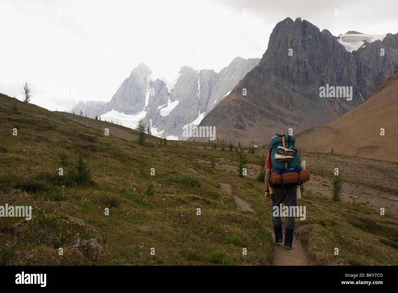 A male backpacker hiking the Rockwall Trail, Kootenay National Park. - Stock Image