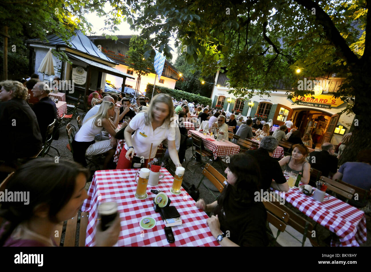 guests in a beergarden aying bavaria germany stock photo