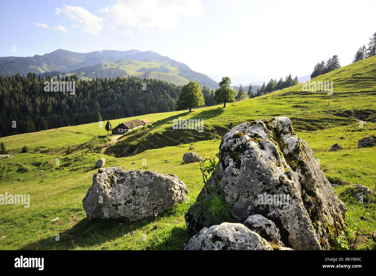 Sudelfeld near Bayrischzell, Bavaria, Germany - Stock Image