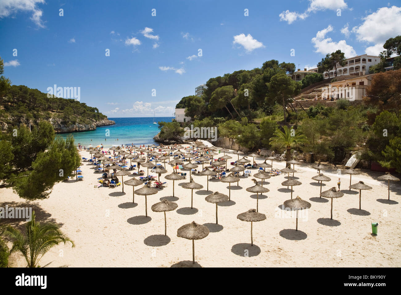 Sandy beach with sunshades at the bay of Cala Santanyi, Mallorca, Balearic Islands, Spain, Europe - Stock Image