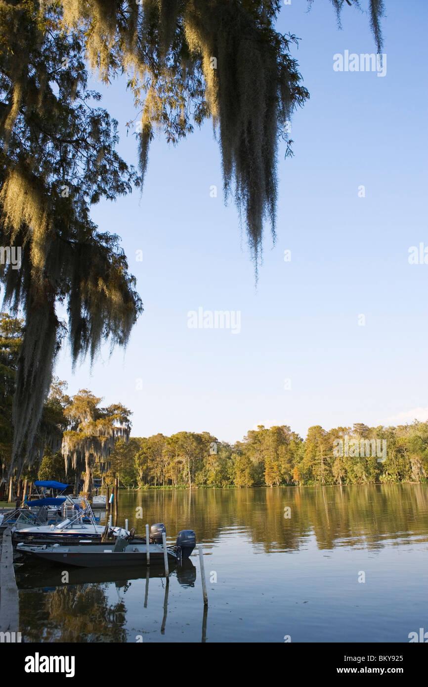 Parked boats near Attakapas Landing on Lake Verret, near Pierre Part, Louisiana, USA - Stock Image