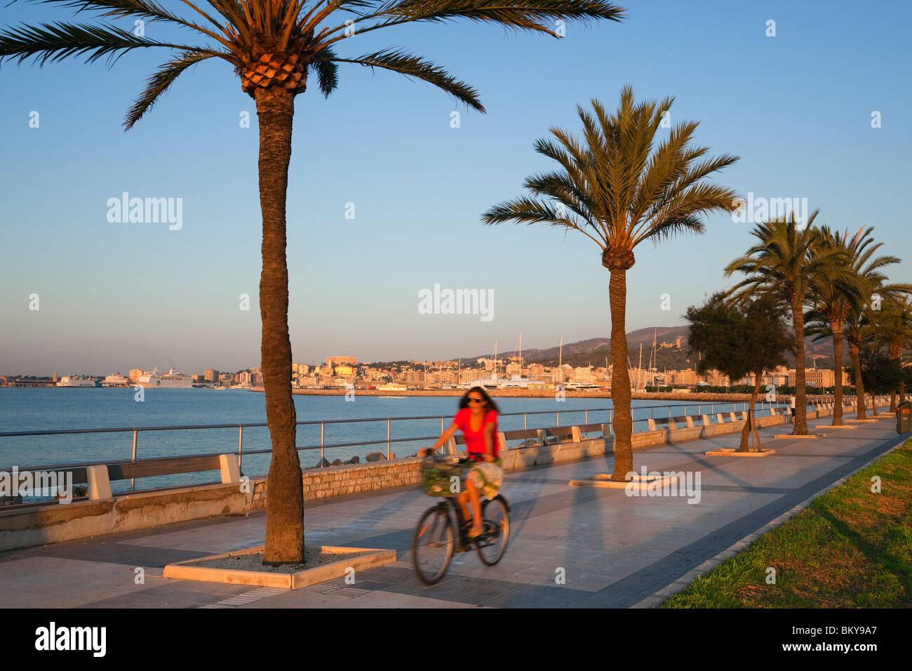 Cyclist at waterfront promenade Avinguda Gabriel Roca at sunrise, Palma, Mallorca, Balearic Islands, Mediterranean - Stock Image