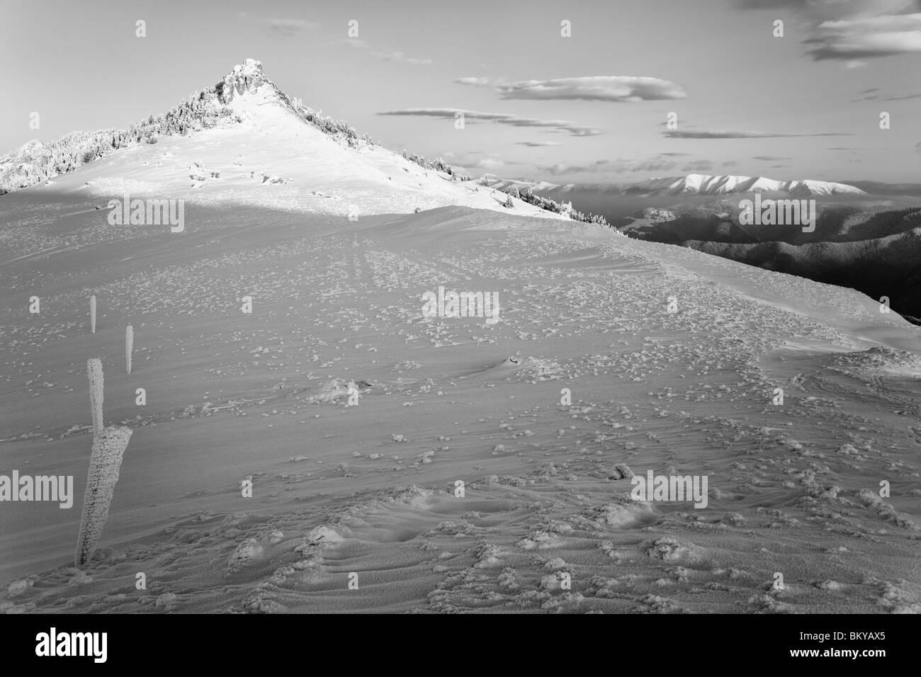 BW landscape in Fatras in Slovakia - Stock Image