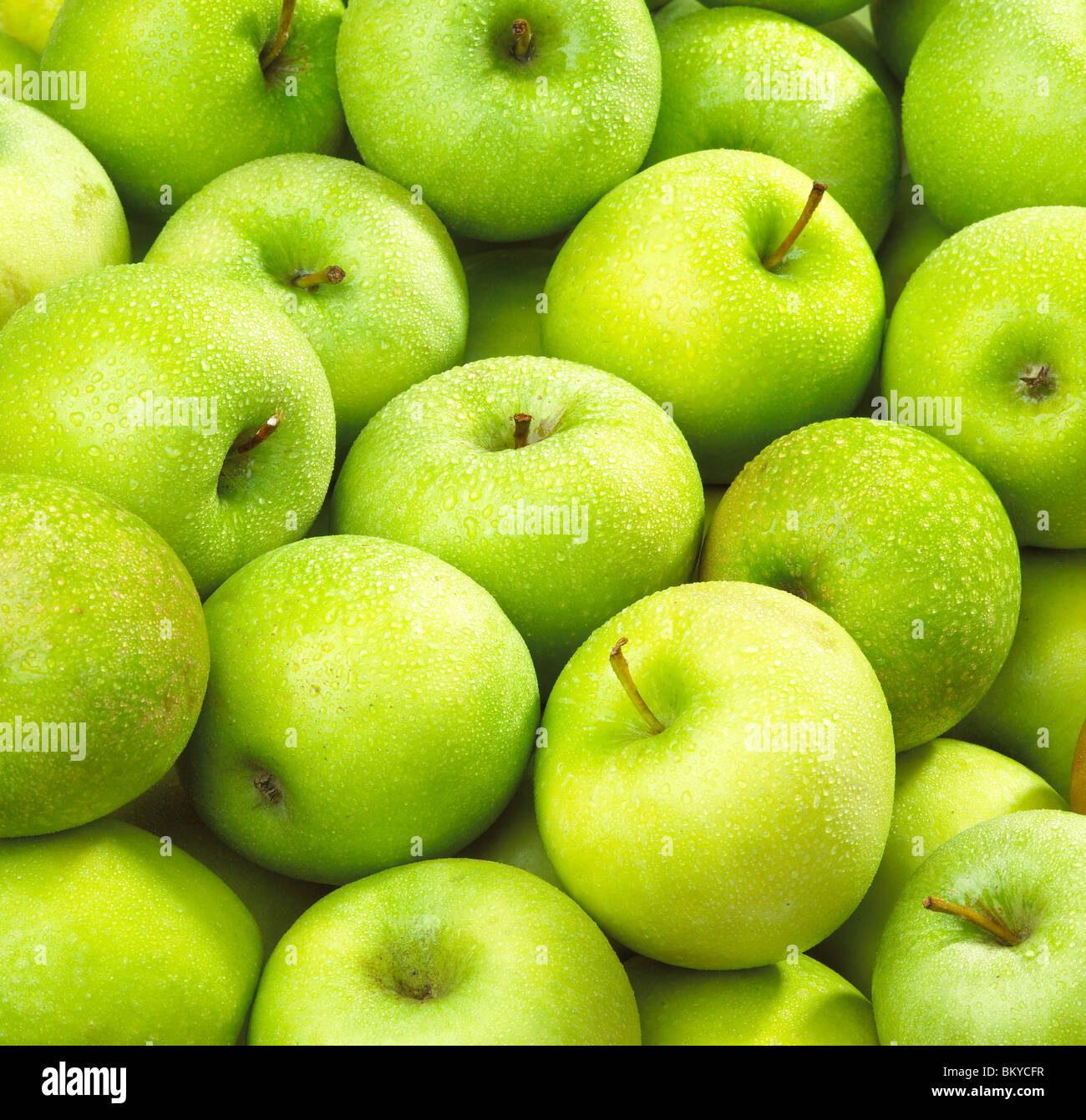 Apples wet - Stock Image