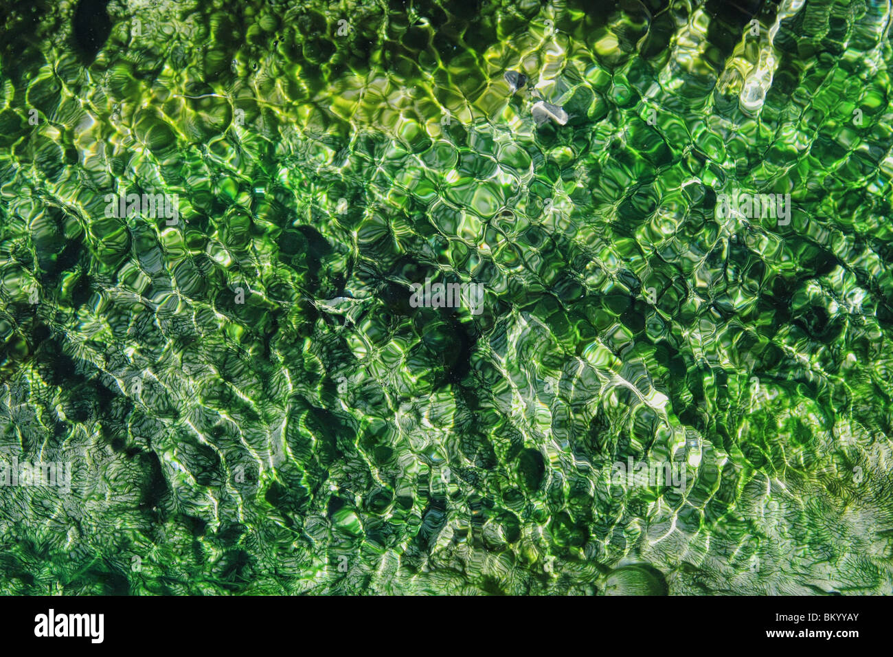 hot springs stream with vibrant emerald and green algae and ripples - Stock Image
