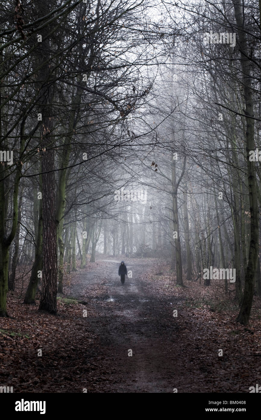 Small figure in the woods in winter - Stock Image