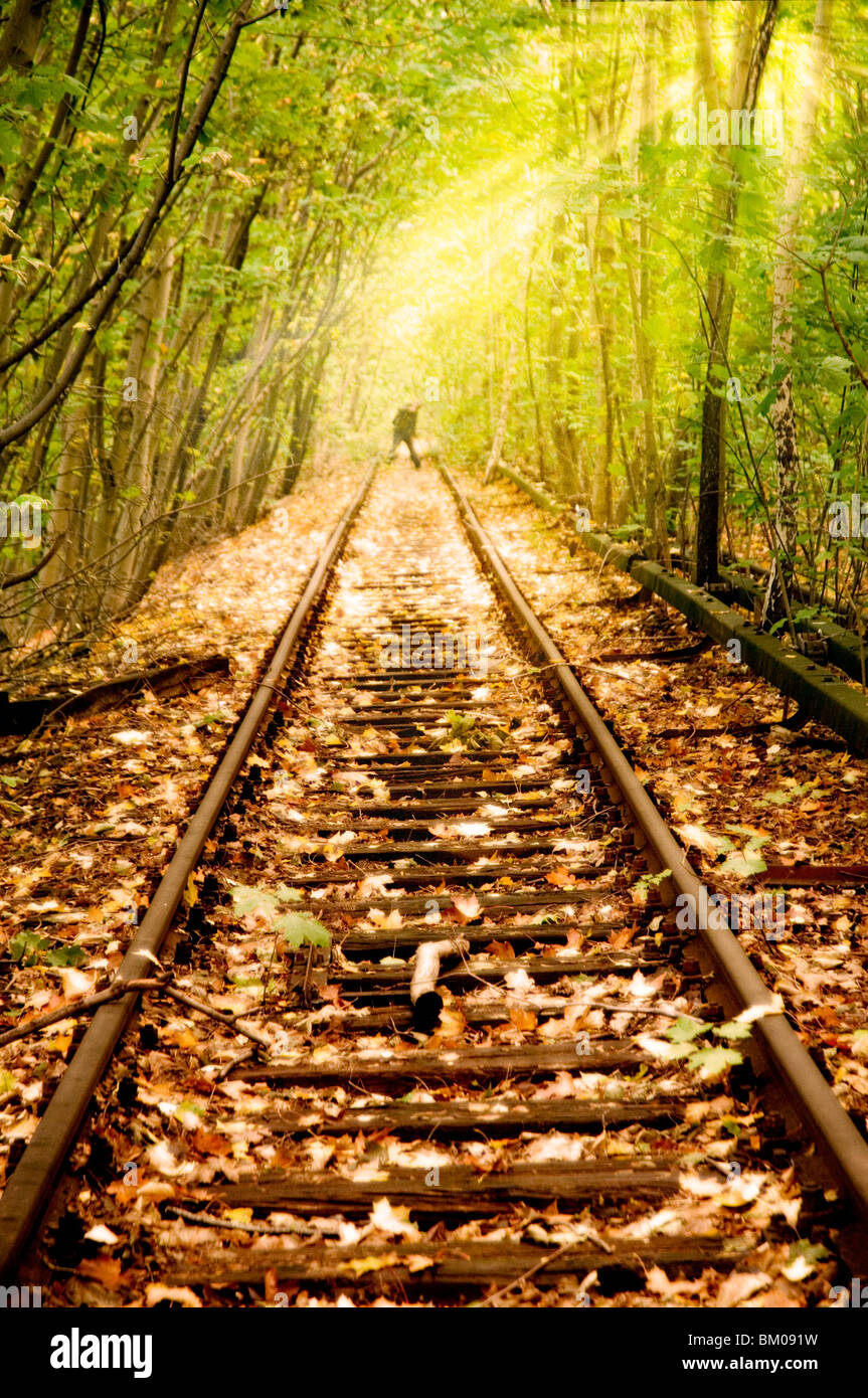 Old Rail line unused since the 80s in Berlin running through woods with a figure in the distance - Stock Image