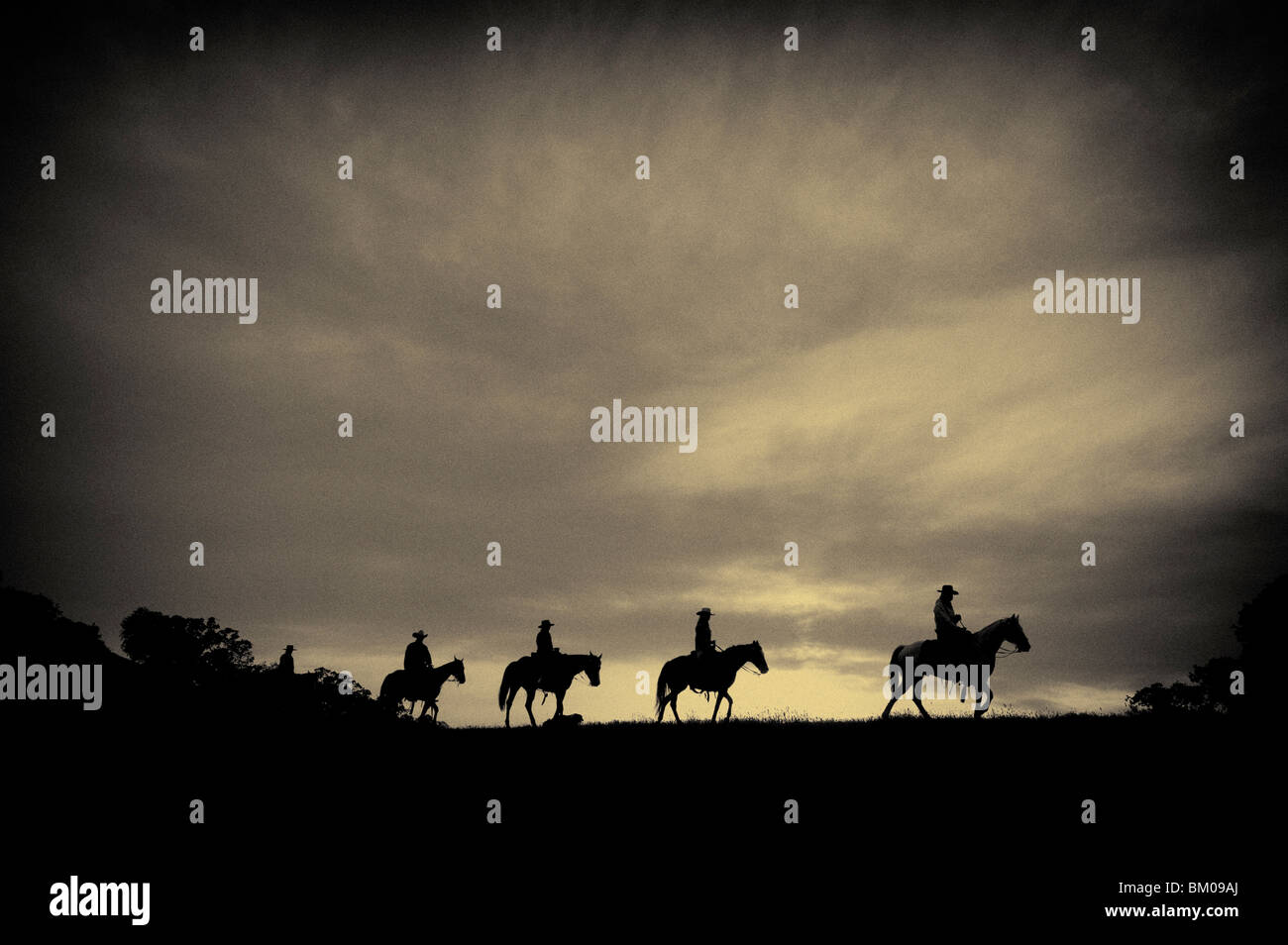 Horses and cowboys on their way home at sunset - Stock Image