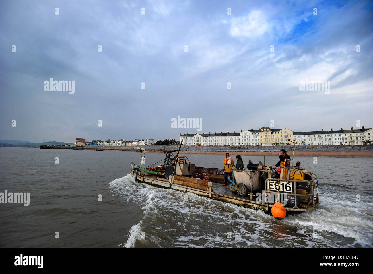 A Mussel barge fishing for mussels on the Exe Estuary, Exmouth, Devon. Stock Photo