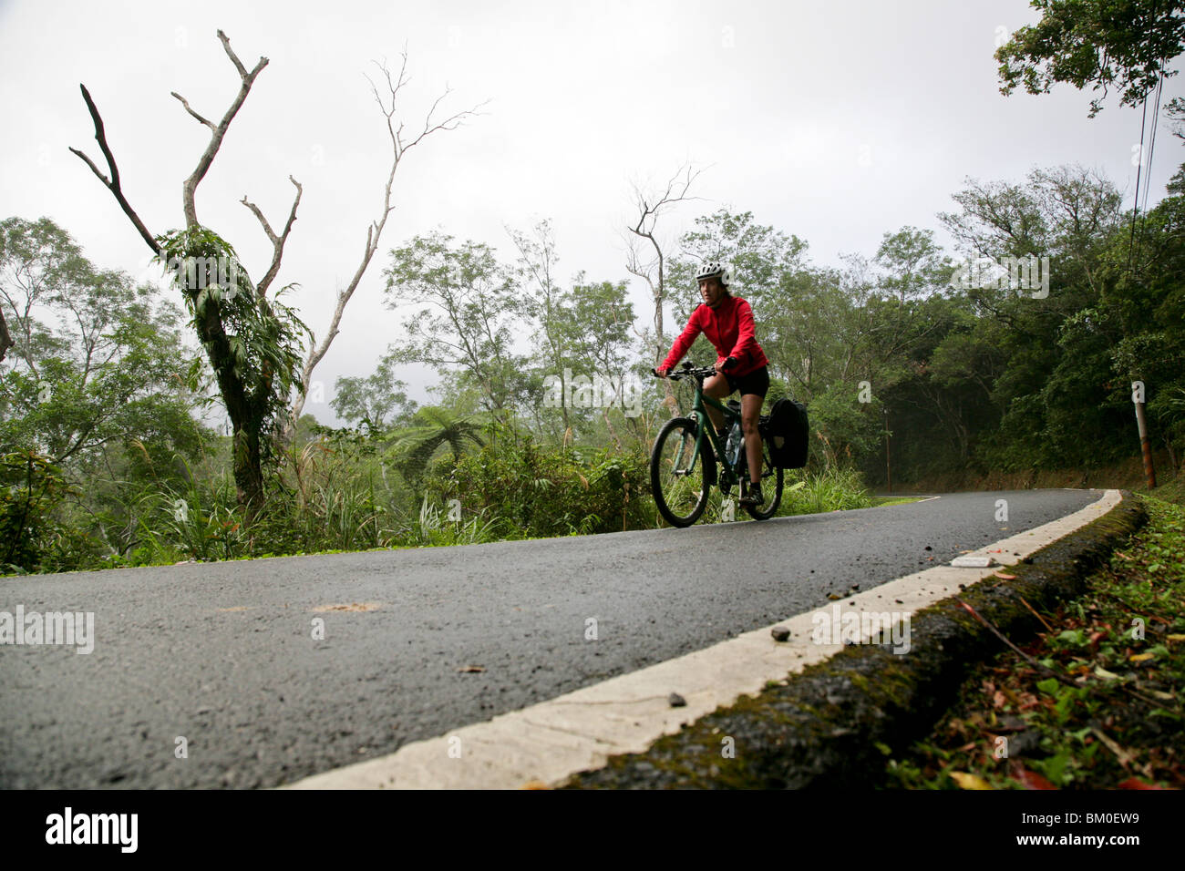 German woman cycling on a road in the rainforest, east coast of Taiwan, Republic of China, Taiwan, Asia - Stock Image