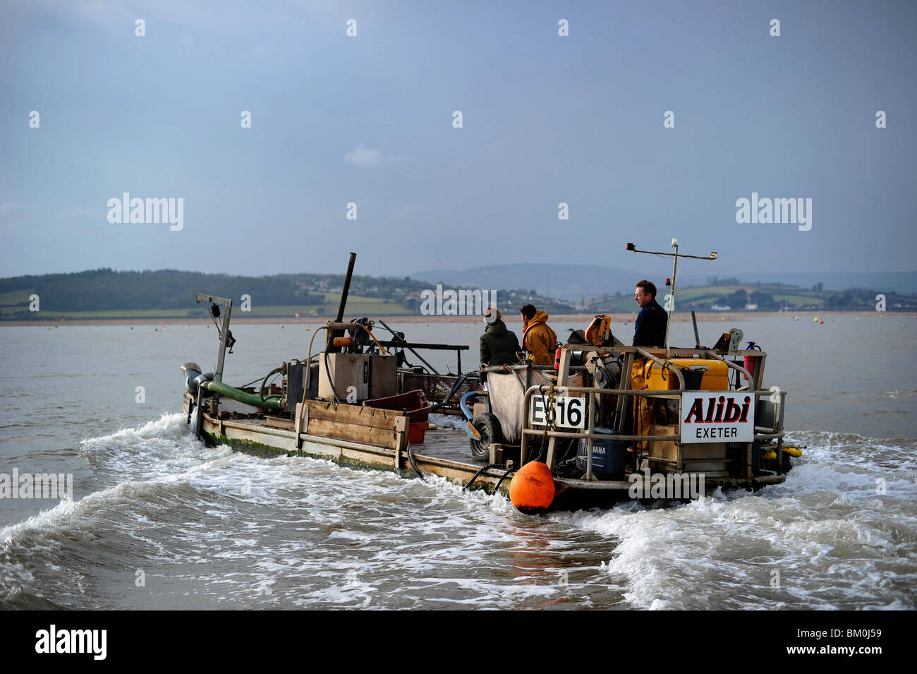 A mussel barge pictured working on the Exe Estuary, Exmouth, Devon - Stock Image