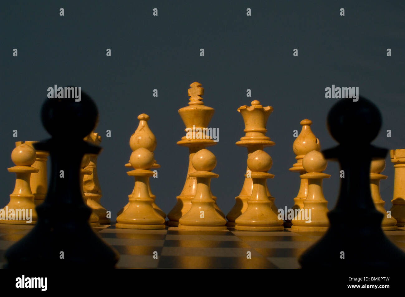 Chess. Two black pawns silhouetted in front of white chess pieces on chess board - Stock Image