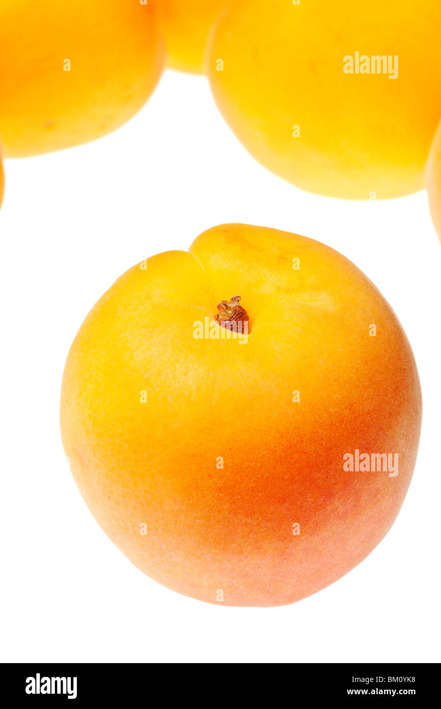 apricot isolated on a pure white background - Stock Image