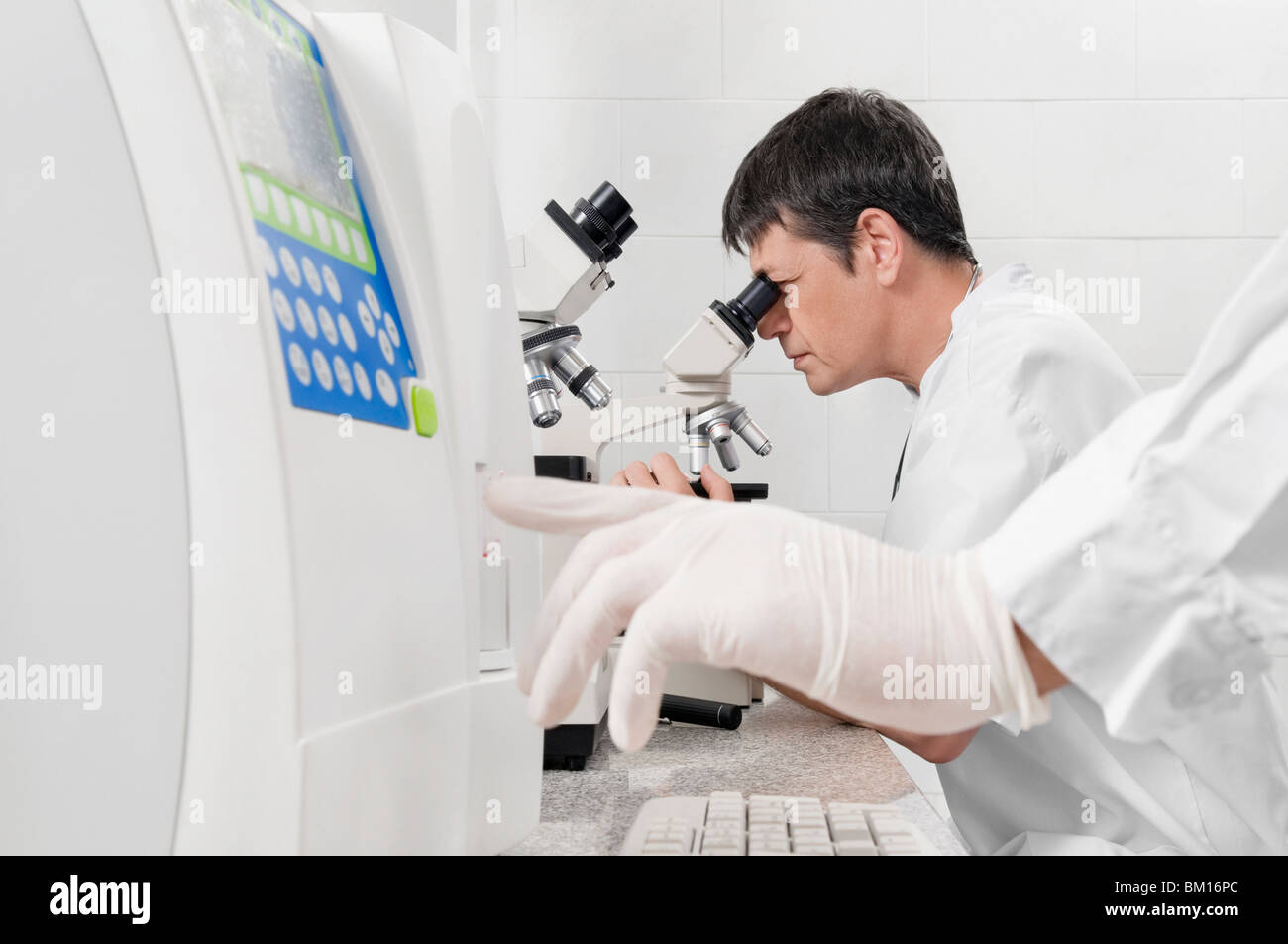 Vet looking into a microscope - Stock Image