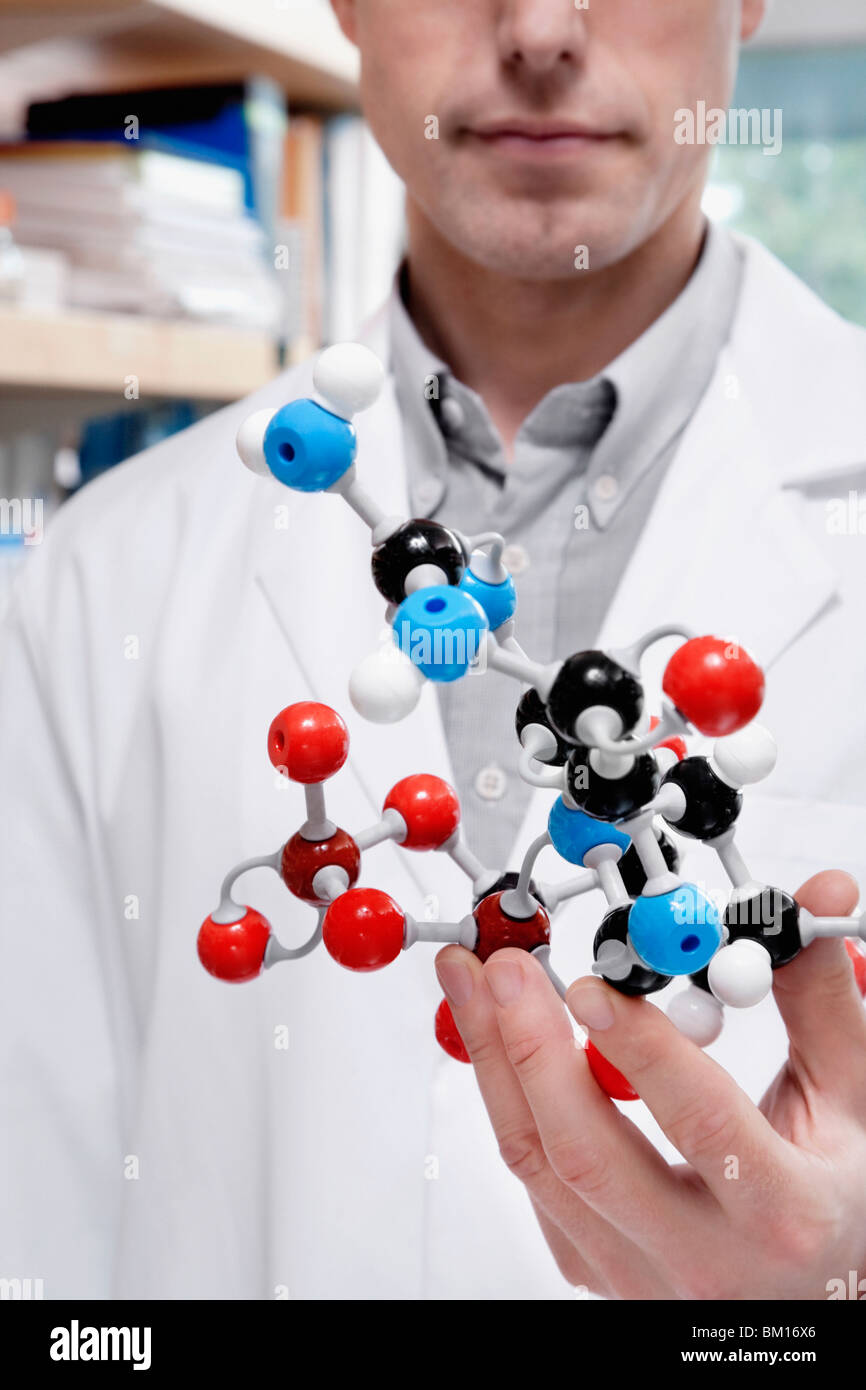 Doctor holding a molecular model in a laboratory - Stock Image