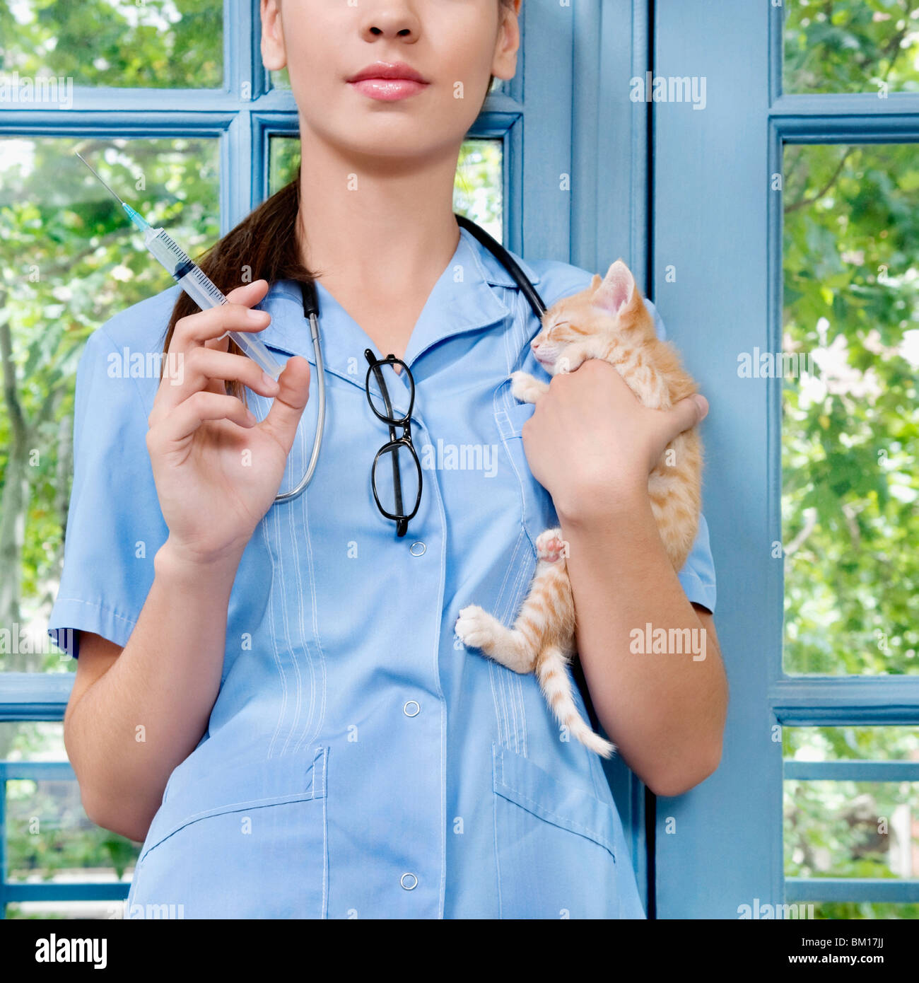Female vet injecting a cat - Stock Image