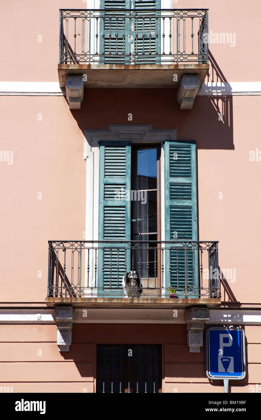 Dog on a balcony in Lugano, Switzerland - Stock Image