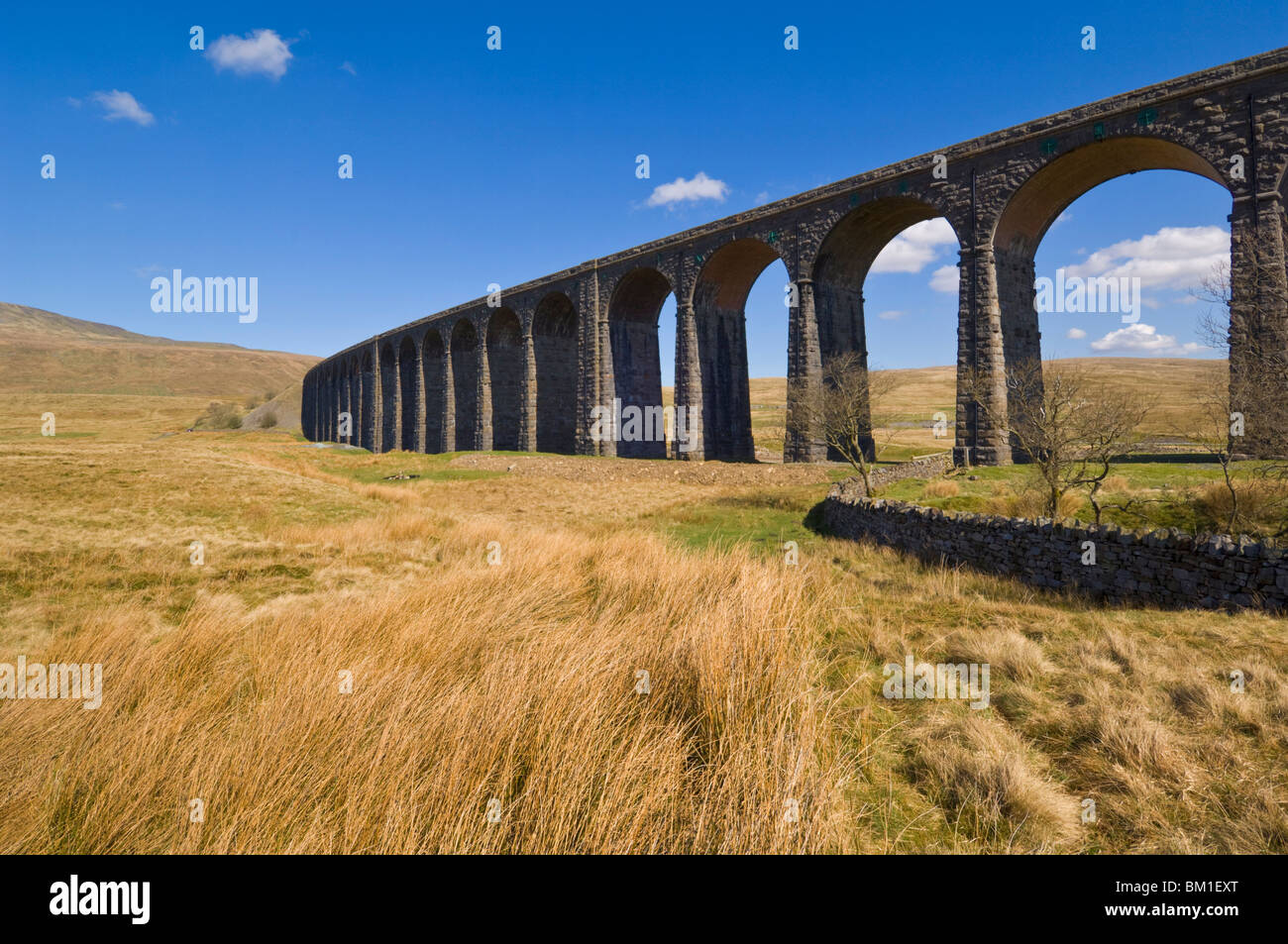 Ribblehead railway viaduct on the Settle to Carlisle rail route, Yorkshire Dales National Park, England, United - Stock Image