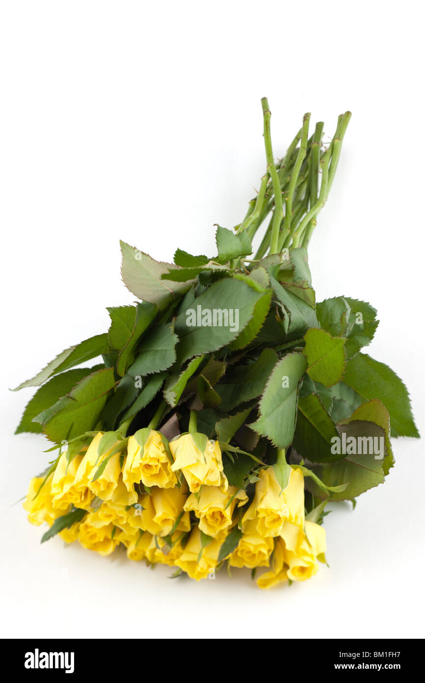 Bunch of yellow roses - Stock Image