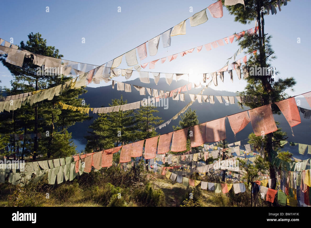 Prayer flags above Thimphu, Bhutan, Asia - Stock Image