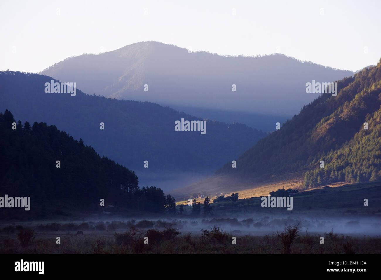 Mist in Phobjikha Valley, Bhutan, Himalayas, Asia - Stock Image