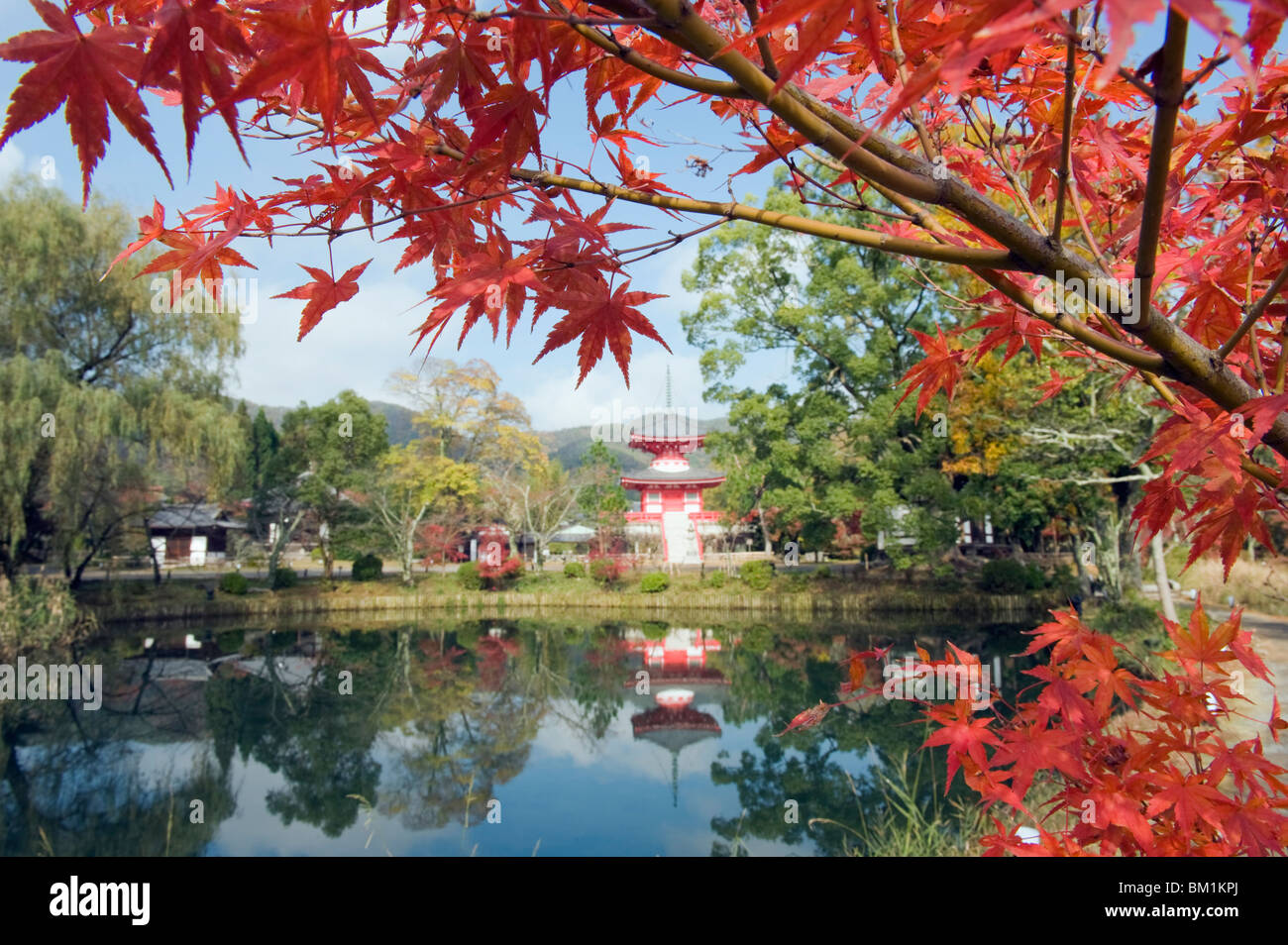 Pagoda on Osawa Pond, Daikaku ji (Daikakuji) Temple, dating from 876, Sagano area, Kyoto, Japan, Asia Stock Photo