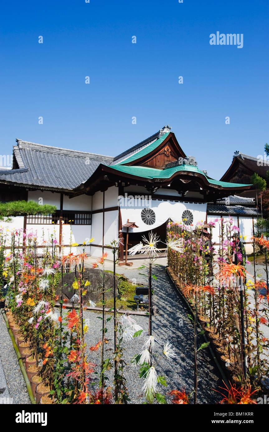 Ikebana flower arrangement, Daikaku ji (Daikakuji) Temple, dating from 876, Sagano area, Kyoto, Japan, Asia - Stock Image