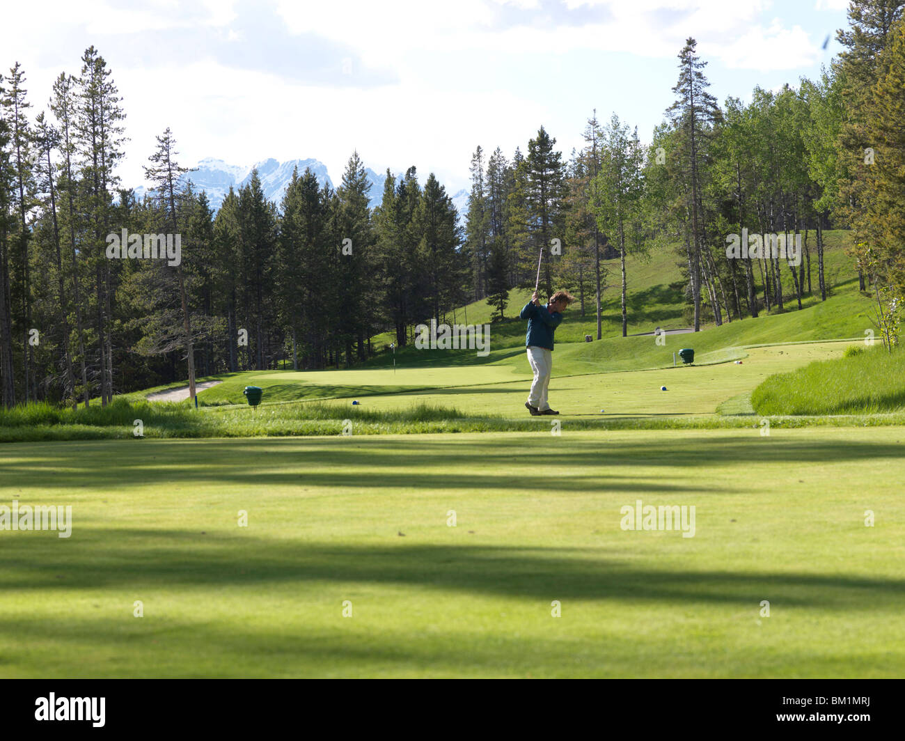 Man golfs on forested course  Silvertip Golf Course  Canmore  Canada  Alberta - Stock Image