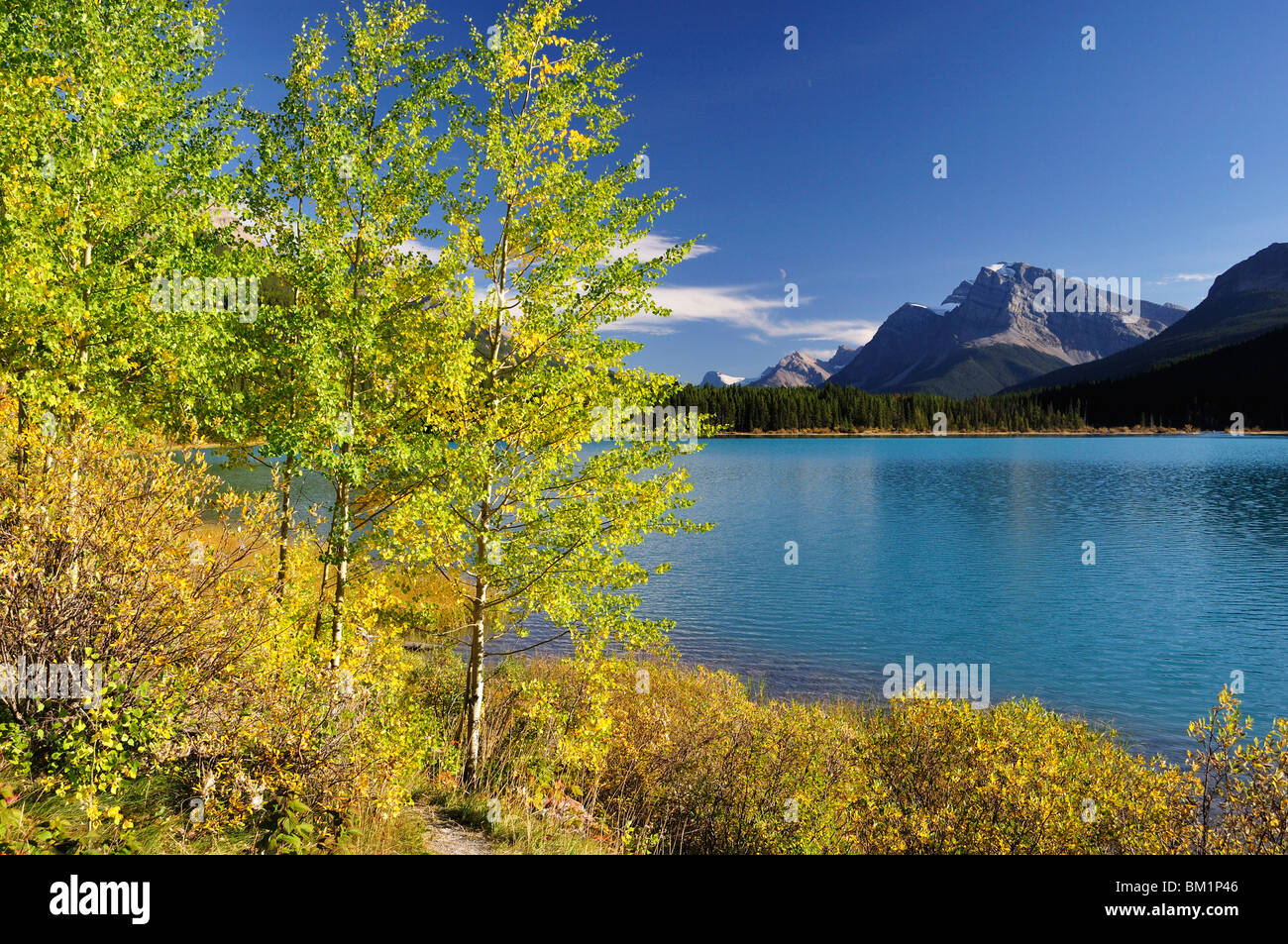 Waterfowl Lake, Banff National Park, UNESCO World Heritage Site, Rocky Mountains, Alberta, Canada, North America - Stock Image