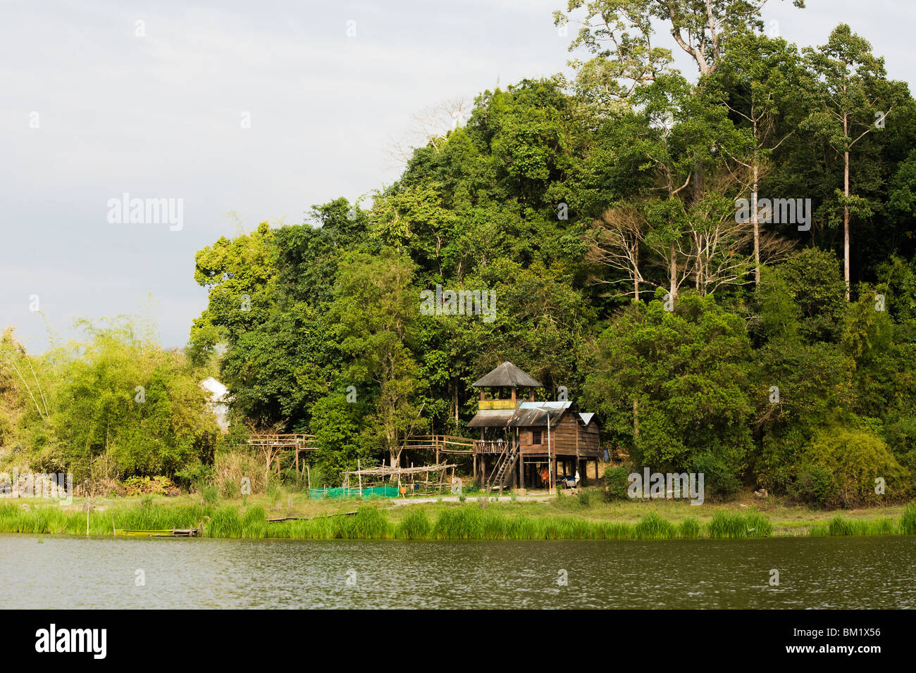 Ranger station and lookout tower by Crocodile Lake deep inside Cat Tien National Park. - Stock Image