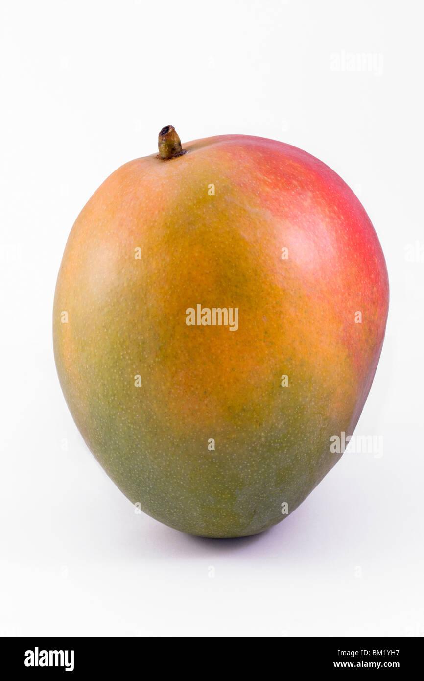 single ripe mango isolated on a white background - Stock Image