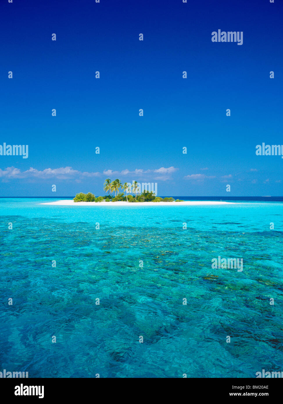 Deserted island, Maldives, Indian Ocean Stock Photo