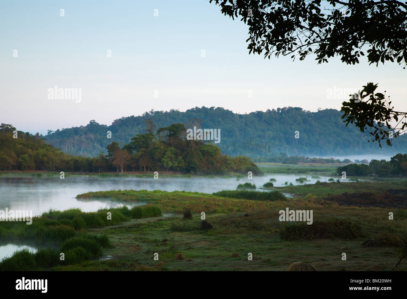 Early morning view of Crocodile Swamp deep inside Cat Tien National Park. - Stock Image
