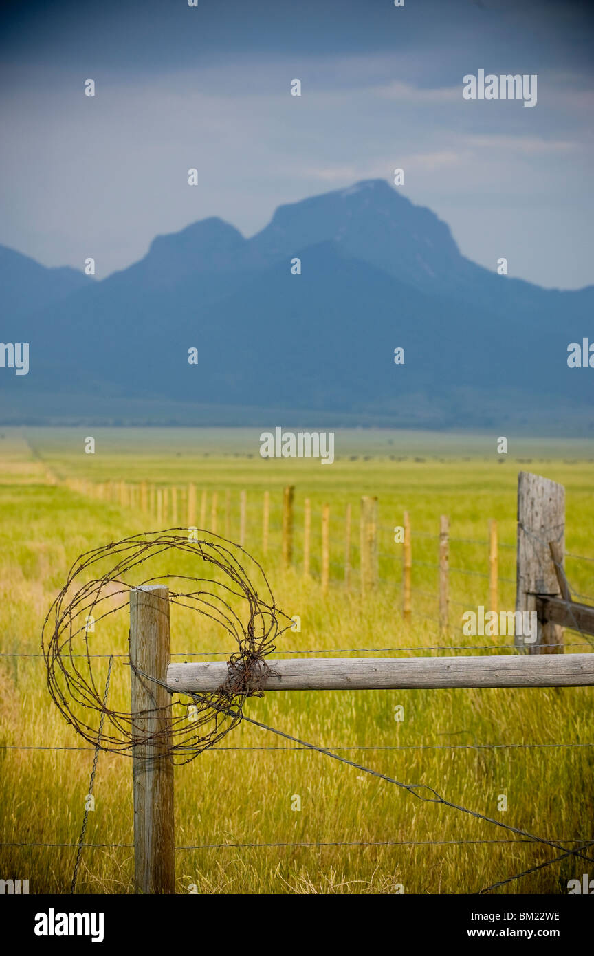 Rusty barbed wire on fencepost, Madison River Valley, Montana, USA - Stock Image