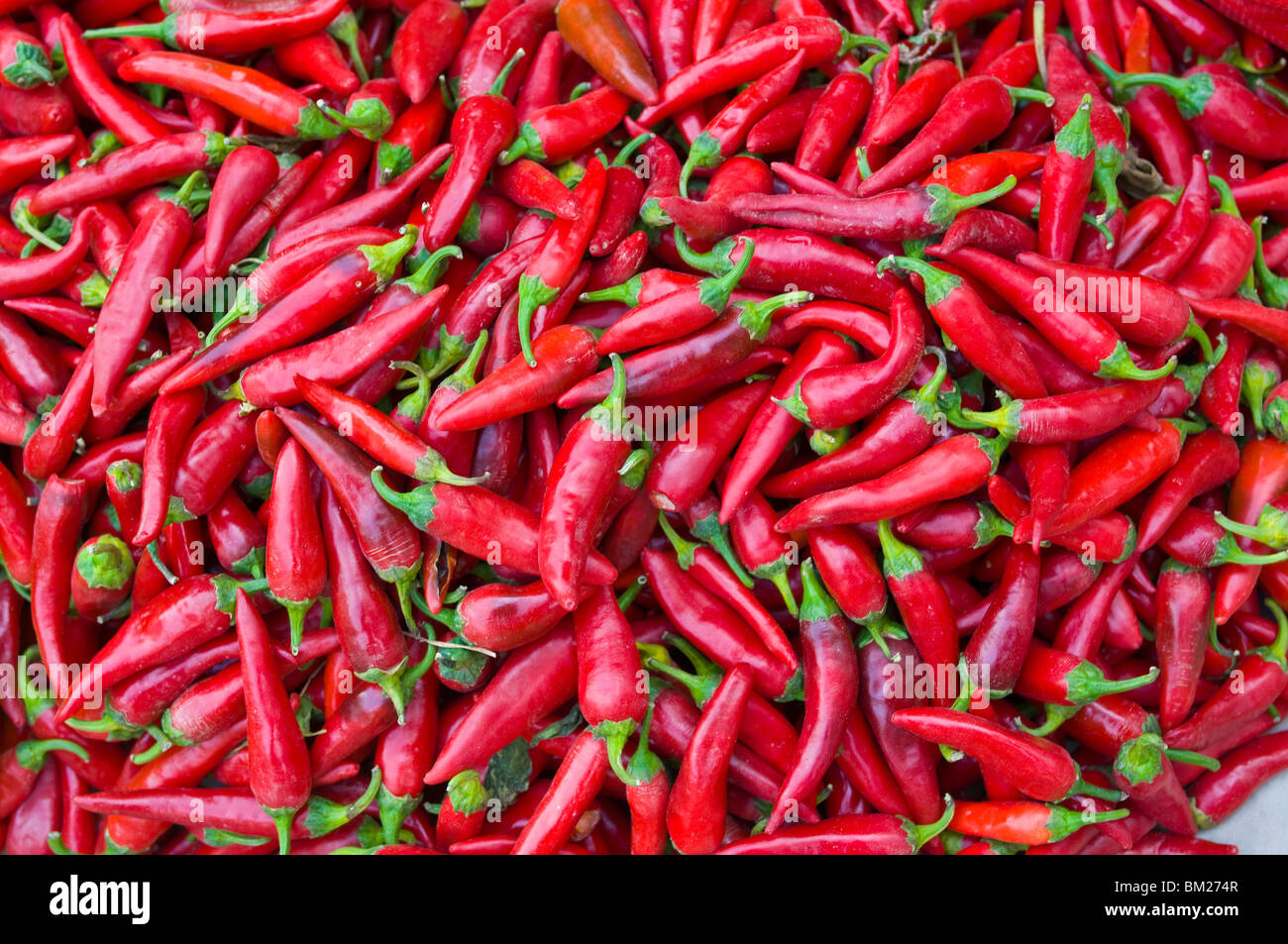 Close-up of red chilies in Nahaufnahme, Osh, Kyrgyzstan, Central Asia - Stock Image