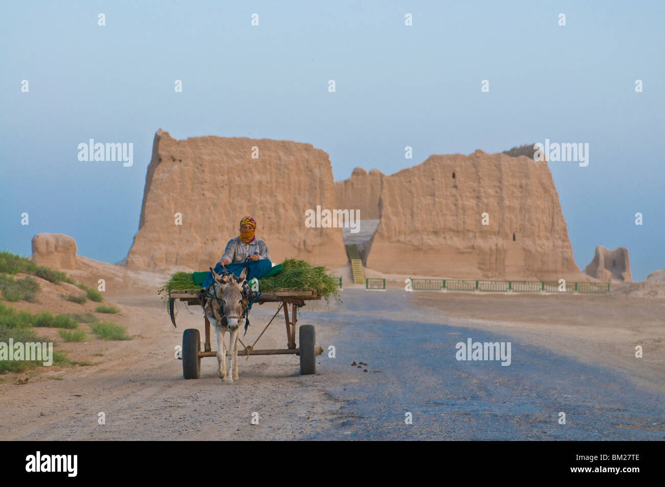 Woman sitting on a donkey cart, Merv, UNESCO World Heritage Site, Turkmenistan, Central Asia, Asia - Stock Image