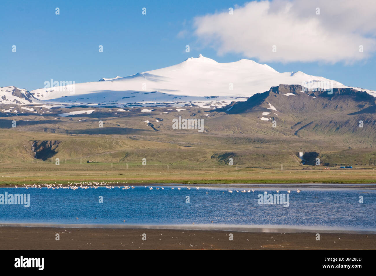 Mountain landscape with body of water and flock of birds, Snaefellsjokull National Park, Iceland, Polar Regions - Stock Image