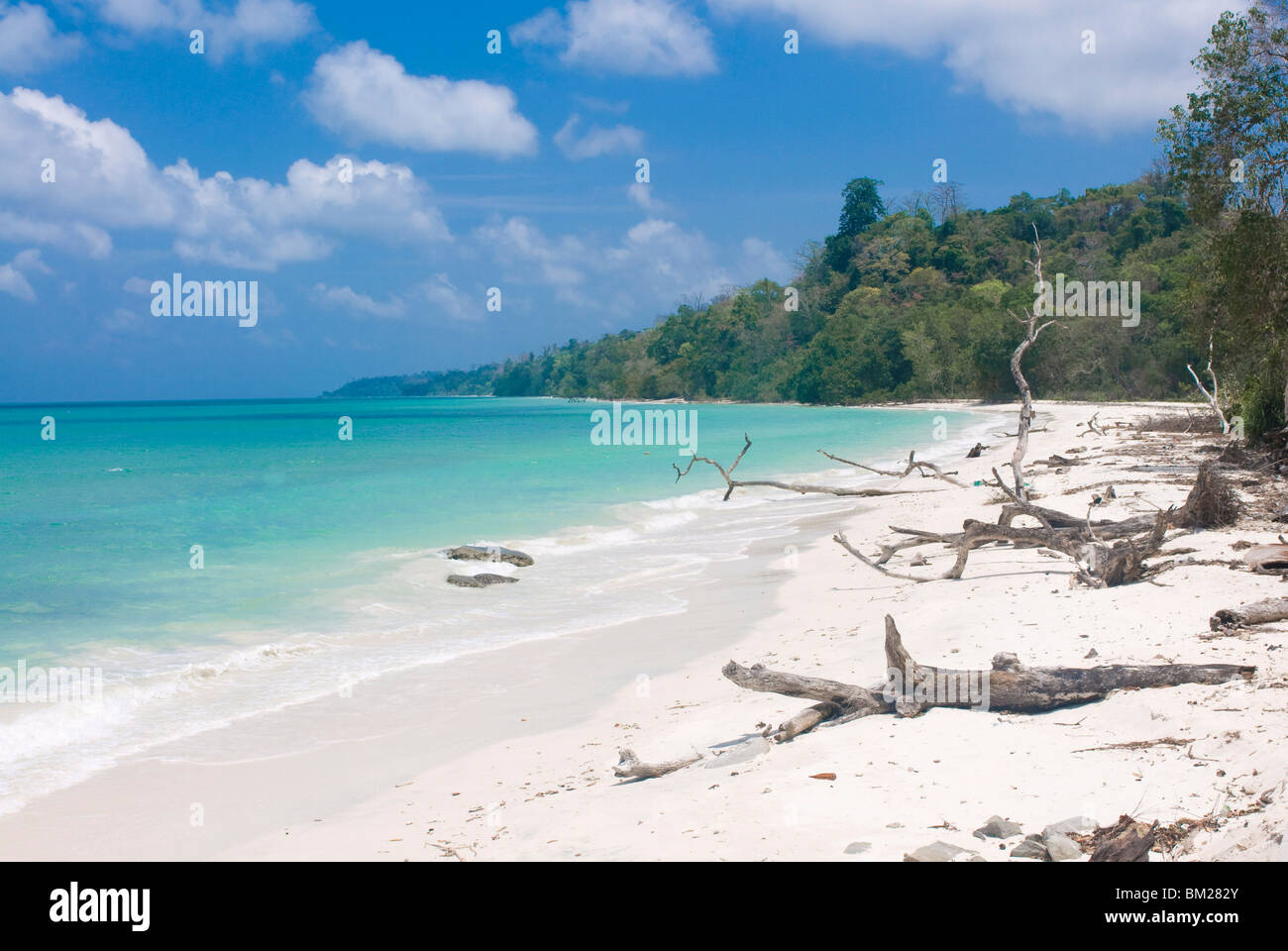 Silver sand beach with turquoise sea, Havelock Island, Andaman Islands, India, Indian Ocean, Asia - Stock Image