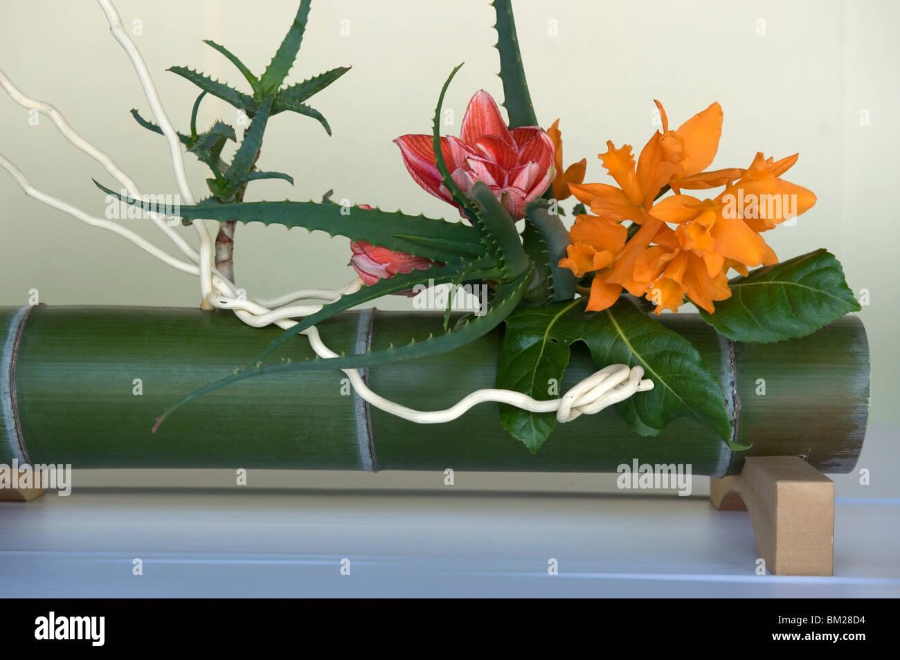 Japanese flower arranging ikebana also called the way of flowers japanese flower arranging ikebana also called the way of flowers kado japan sciox Gallery
