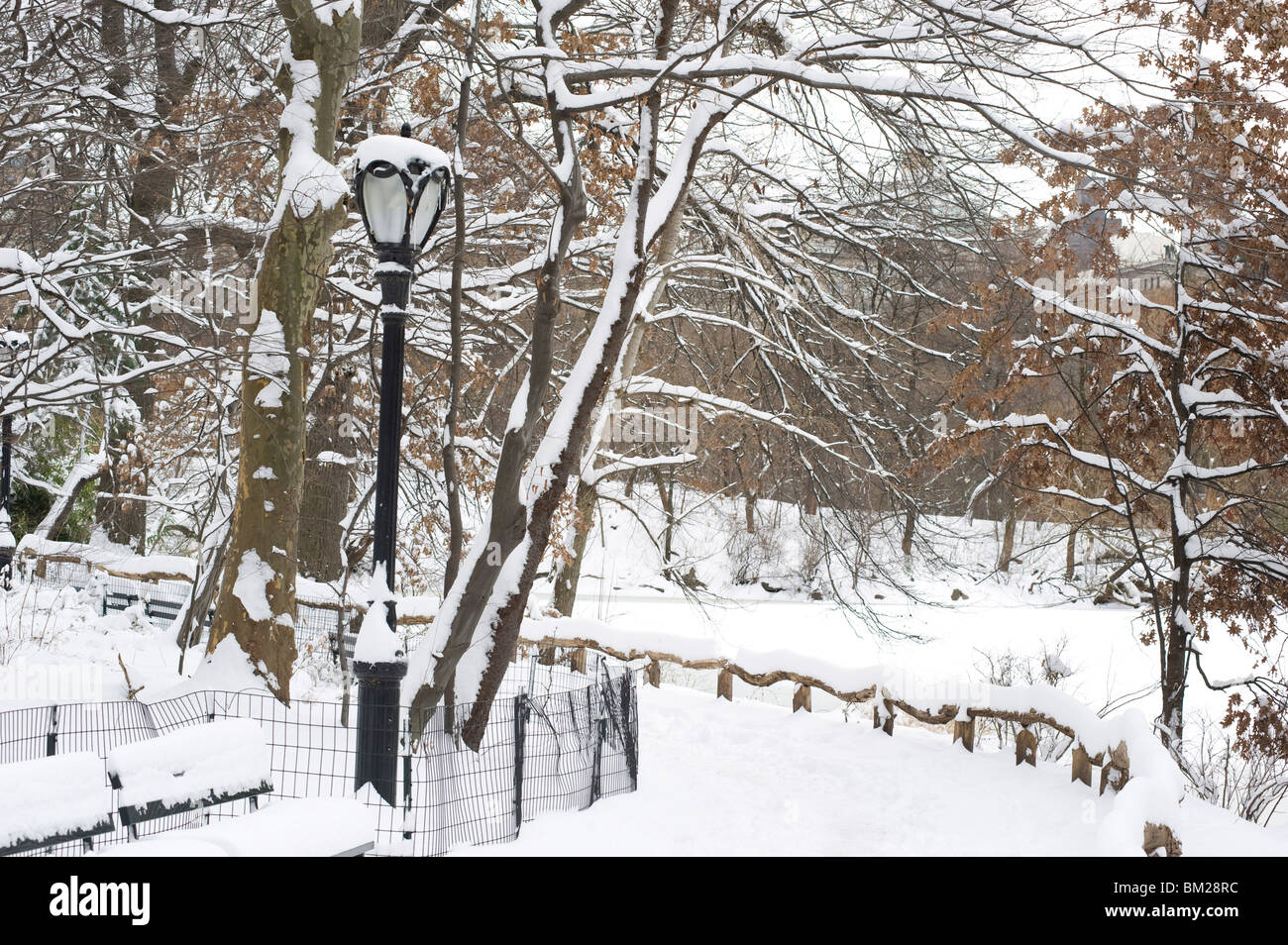 The Ramble in Central Park after a snowstorm, New York City, New York State, USA - Stock Image