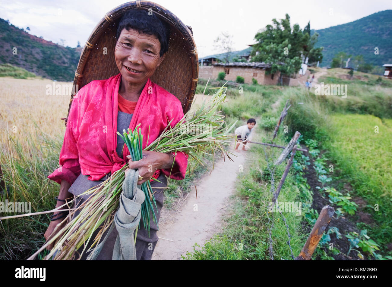 A local woman woking in the fields, Punakha, Bhutan - Stock Image