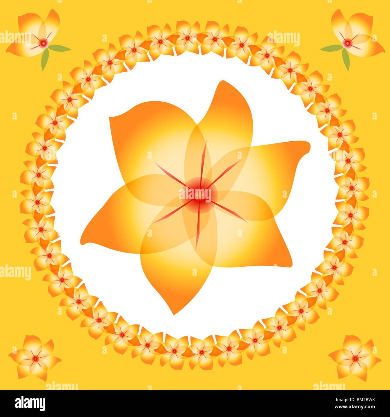 Pretty Orange And Yellow Flowers In A Circular Shape With A Large