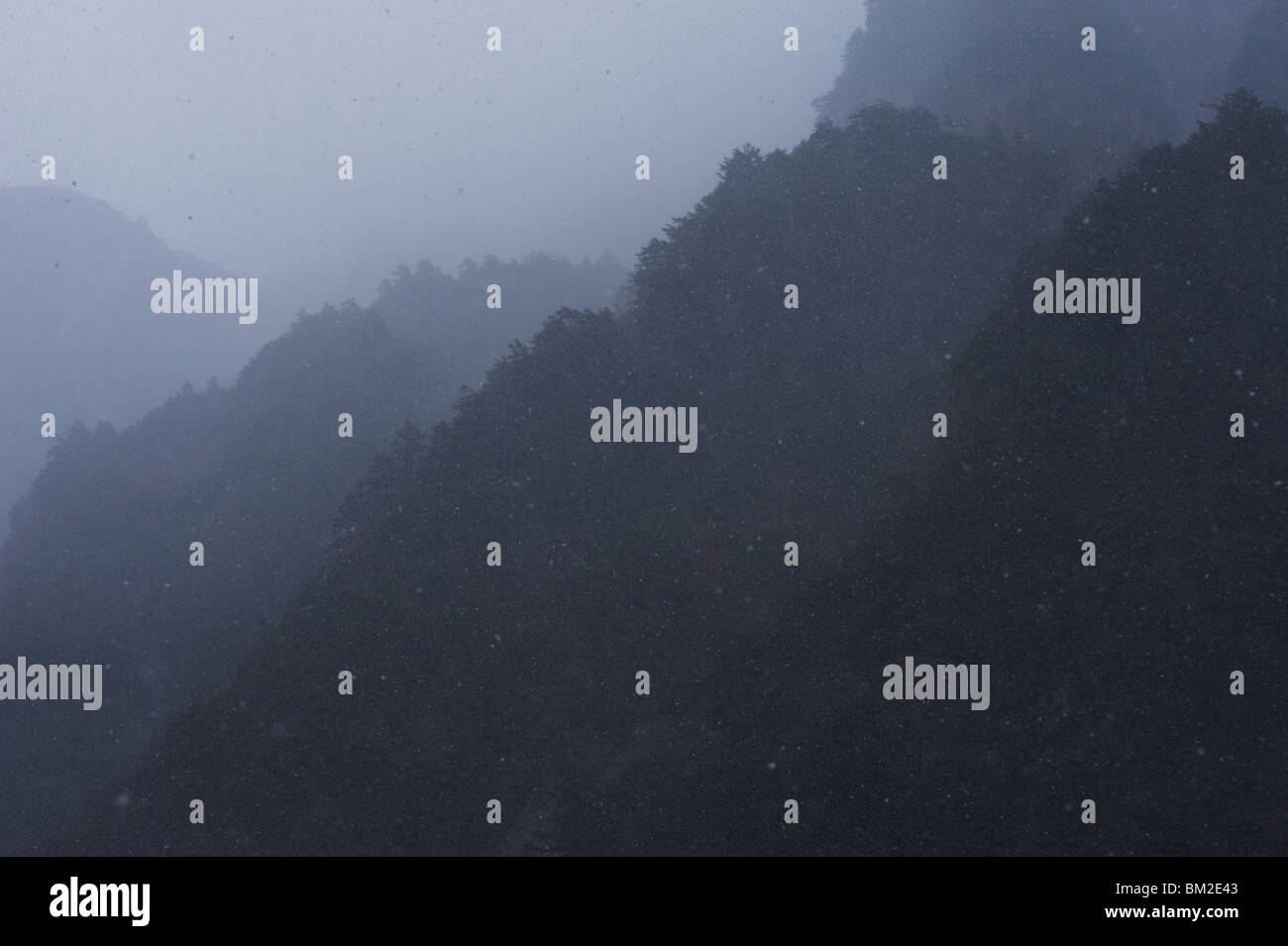 A spring snowstorm obscures the forested mountainsides at Kamikochi, Japan - Stock Image