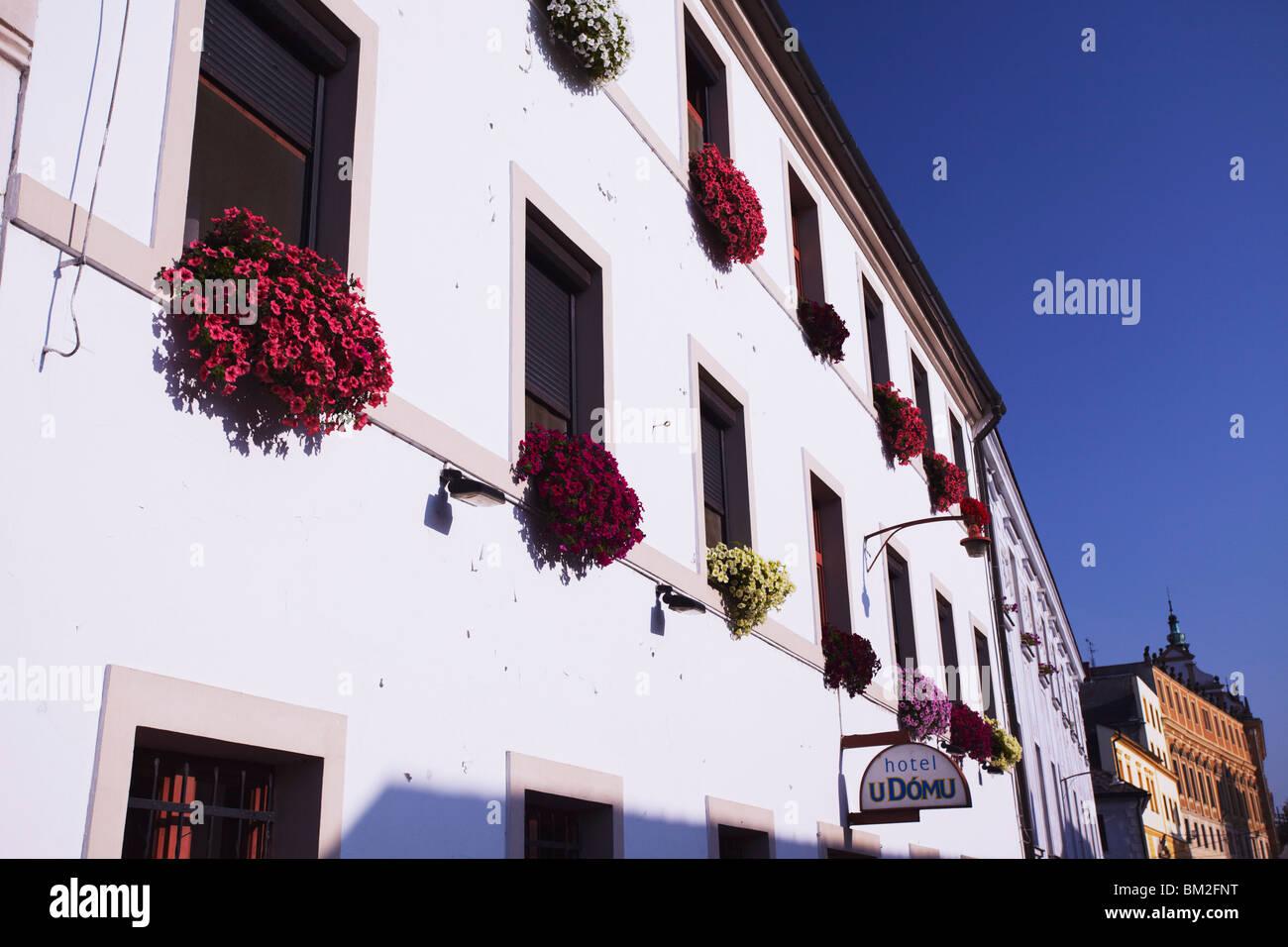 Colourful flowers on facade of hotel, Olomouc, Moravia, Czech Republic - Stock Image