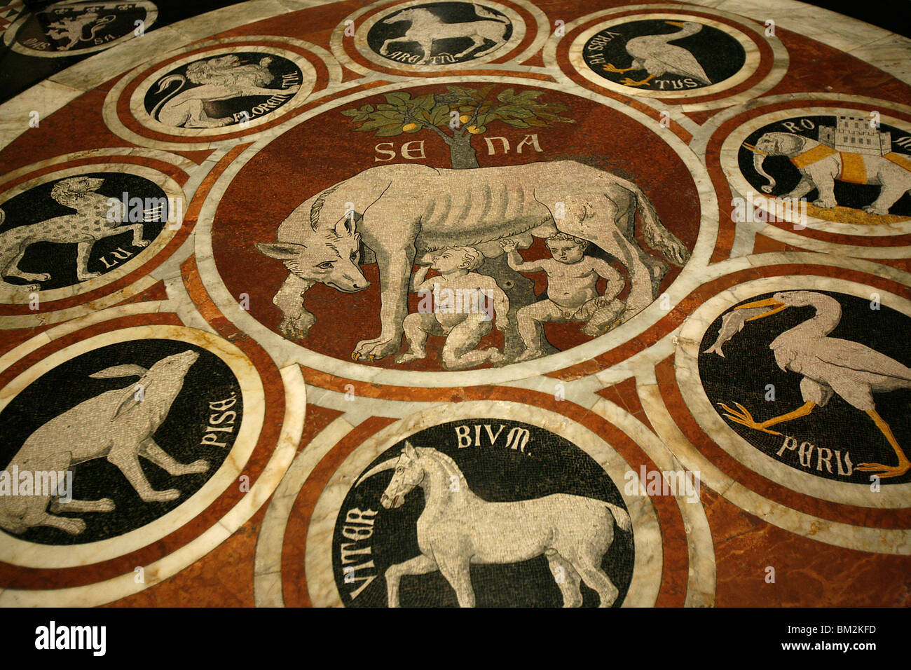 Romulus and Remus in marble work in the Duomo di Sienna, Siena, Tuscany, Italy - Stock Image