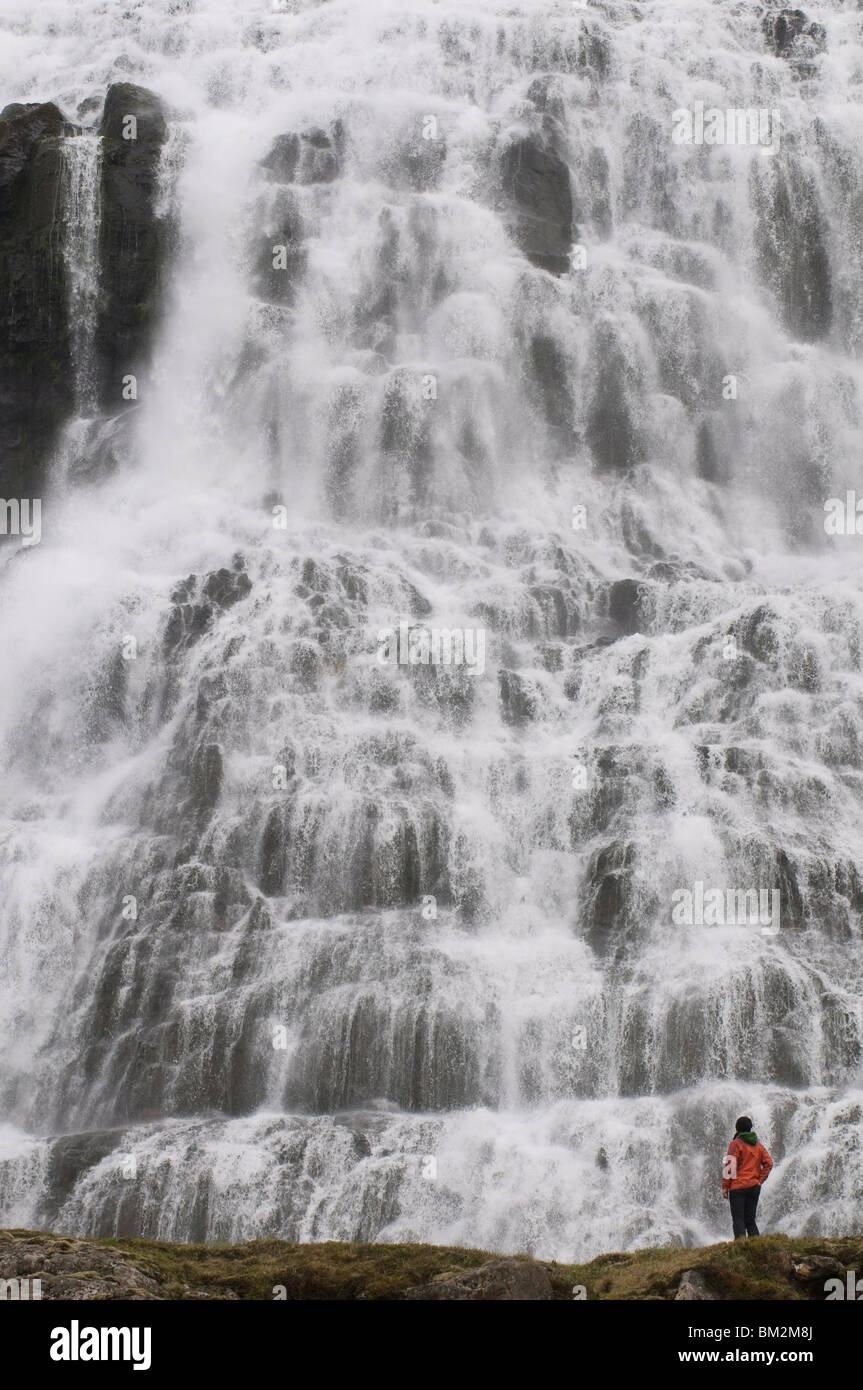 Tourist admiring the dramatic waterfalls of Dynjandi, Iceland, Polar Regions - Stock Image